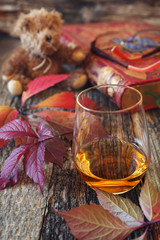 Glass of cognac, red leaves, old book and teddy bear