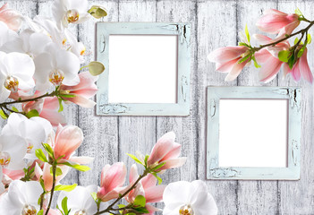 Magnolia flowers with orchidea and photo frames