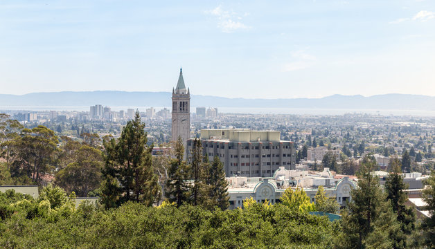 Berkeley University with clock tower and city view.