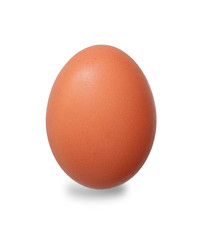 Only single brown chicken egg isolated on white