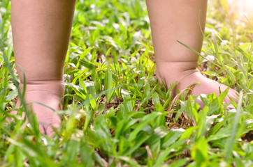 legs a little child on the grass lawn
