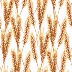 Hand drawn watercolor seamless repeated pattern with autumn yellow wheat ears
