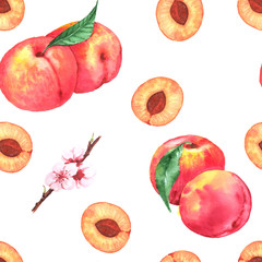Hand-drawn watercolor seamless pattern with orange fresh peaches and flowers. Repeated background