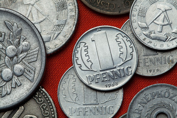 Coins of the German Democratic Republic (East Germany) Wall mural