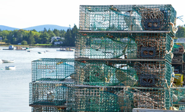 Lobster traps in Southwest Harbor, Maine