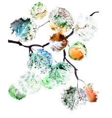 Watercolor painting of a autumn branch of aspen tree, dark colors. Isolated on white background
