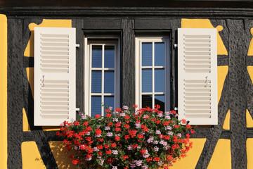 Facciata di una tipica casa in Alsazia con finestre in legno e parete colorata
