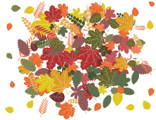 vector illustration background bunch of colorful autumn leaves