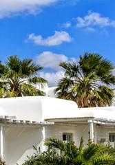 Weißgetünchtes Haus zwischen den Palmen