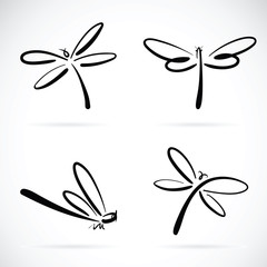 Vector group of dragonfly sketch on white background. insects.