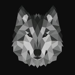 Low poly Wolf portrait.