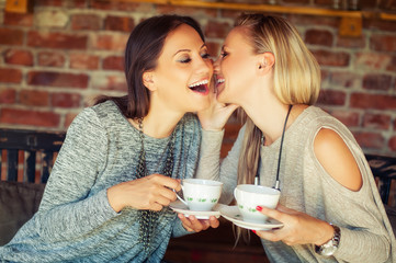 Two young female friends gossiping in a bar