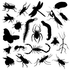 Set of insect silhouettes