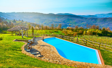 The pool at the hill near vineyard. Arezzo,Toscana
