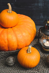 three pumpkins on a black background