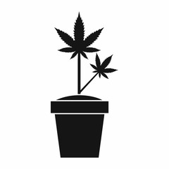 Hemp in pot icon in simple style isolated on white background. Plant symbol