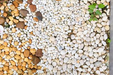 white pebbles background texture
