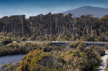 River estuary at Tauparikaka Marine Reserve, Haast, New Zealand