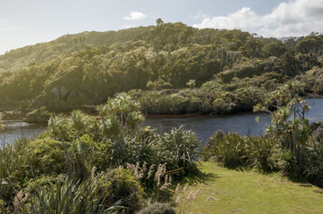 River estuary at Tauparikaka Marine Reserve, Haast, New Zealand