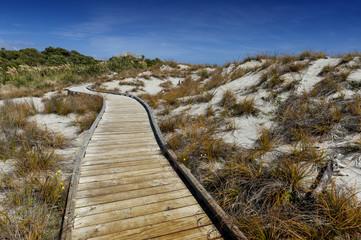 Wooden walkway by the beach at Tauparikaka Marine Reserve, Haast, New Zealand