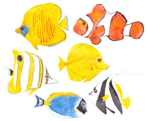 Watercolor illustration, set of six fishes: Copperband butterflyfish, Cownfish, Addis butterflyfish, Powder blue tang, Schooling bannerfish and Yellow tang. Isolated on white background.