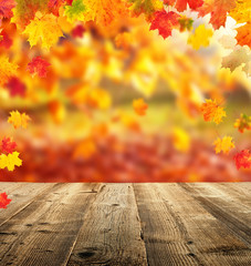 Autumn background with empty planks