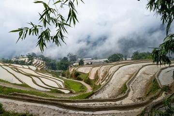 Rice terraces of Hoang Su Phi, Ha Giang, Vietnam