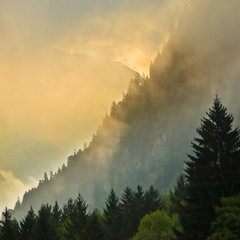 Wall Mural - Sunrise over Mountain ridge with pines