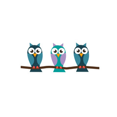 three beautiful little owl on a branch in the style flat