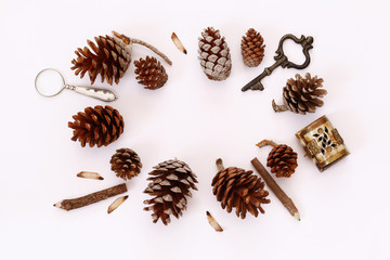 Top view of vintage objects and pine cones