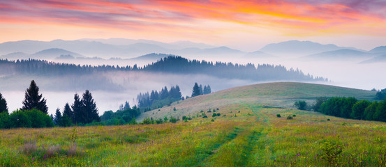 Colorful morning panorama of foggy mountains Wall mural