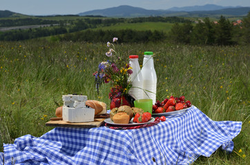 Close-up of picnic breakfast or brunch placed on meadow with meadows in background