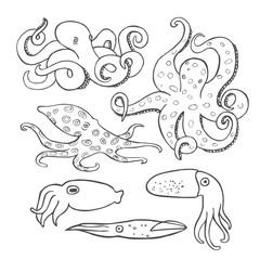 Hand drawn octopus set