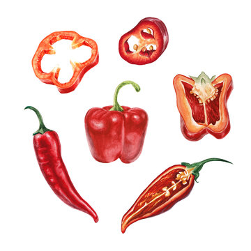 Watercolor chili and red pepper set