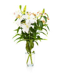 Bouquet of white lilies in glass vase isolated