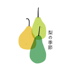 Vector pear card. Set of hand drawn pears. Japanese text means pear season