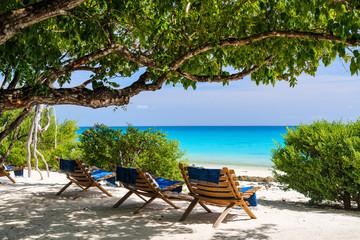 Idyllic beach in Africa