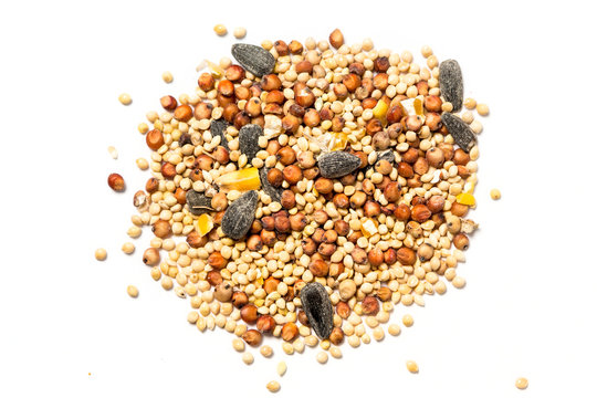 Bird seed mix isolated on white background