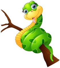 Happy green snake on the branch