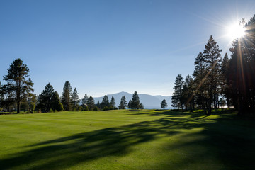 Late afternoon on a golf course, view from the fairway