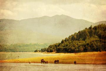 textured horse landscape