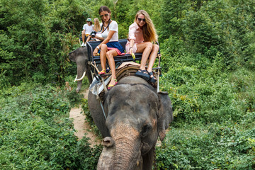 Young tourists go elephant trekking in the jungle