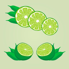 Vector illustration of logo for the theme of the lime.Isolated drawing consists of ripe yellow fruits slice with green leaves on a white background.The icon for the fresh juice vitamins health shop