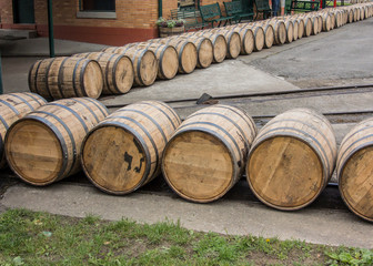 Fototapete - Barrels Roll at Distillery