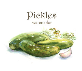 Hand-drawn watercolor food illustration. Pickles isolated on the white background. Ingredient drawing