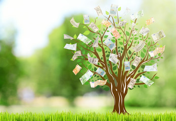 Money tree with grass on blurred natural background.