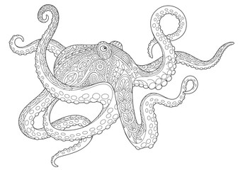 Stylized underwater octopus (poulpe, cuttlefish, squid, devilfish). Freehand sketch for adult anti stress coloring book page with doodle and zentangle elements.