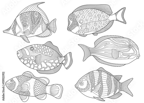 Stylized Collection Of Underwater Tropical Fishes Freehand Sketch For Adult Anti Stress Coloring Book Page