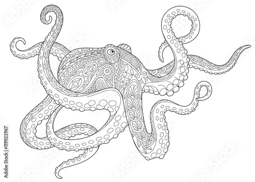 Stylized Underwater Octopus Poulpe Cuttlefish Squid Devilfish Freehand Sketch For