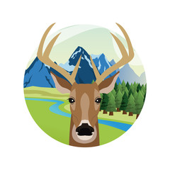 reindeer cartoon animal picture icon. Circle and colorful design. Vector illustration